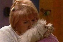 Angie Rebecchi, Bob in Neighbours Episode 4315