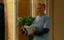 Declan Sands in Neighbours Episode 4398