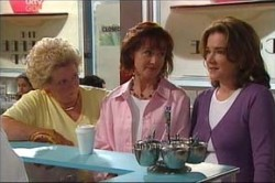 Lyn Scully, Valda Sheergold, Susan Kennedy in Neighbours Episode 4443