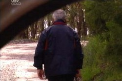 Lou Carpenter in Neighbours Episode 4451