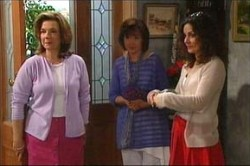 Lyn Scully, Susan Kennedy, Liljana Bishop in Neighbours Episode 4456