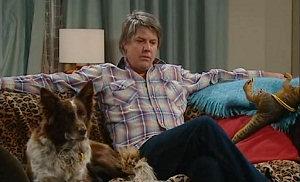 Harvey, Joe Mangel in Neighbours Episode 4816