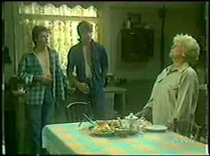 Mrs Forbes, Danny Ramsay, Scott Robinson in Neighbours Episode 0033