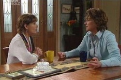 Lyn Scully, Susan Kennedy in Neighbours Episode 4619