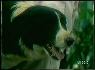 Patch in Neighbours Episode 0046