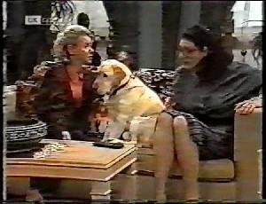 Helen Daniels, Bouncer, Dorothy Burke in Neighbours Episode 1780