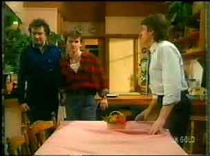 Max Ramsay, Danny Ramsay, Shane Ramsay in Neighbours Episode 0170