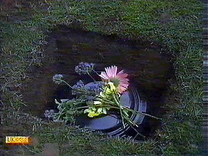 in Neighbours Episode 0895