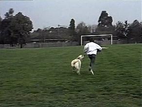 Toby Mangel, Bouncer in Neighbours Episode 1494