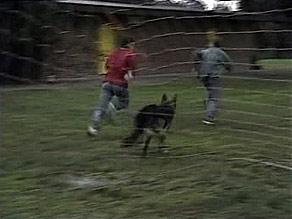 Josh Anderson, Todd Landers in Neighbours Episode 1494