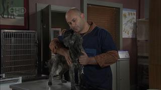 Steve Parker in Neighbours Episode 5507