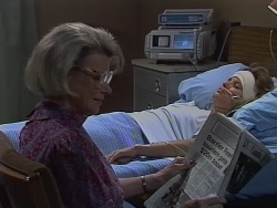 Helen Daniels, Daphne Clarke in Neighbours Episode 0690
