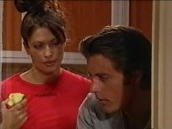 Sarah Beaumont, Drew Kirk in Neighbours Episode 3286