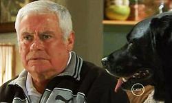 Lou Carpenter, Jake in Neighbours Episode 5531