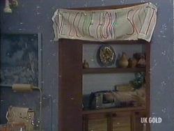 in Neighbours Episode 0189