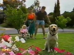Sky Mangel, Kerry Bishop, Joe Mangel, Bouncer in Neighbours Episode 0941