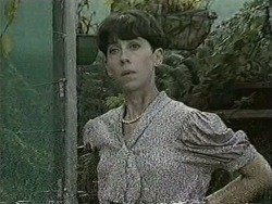 Hilary Robinson in Neighbours Episode 0942