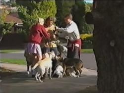 Amy Greenwood, Joel Samuels, Lance Wilkinson in Neighbours Episode 3150