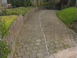in Neighbours Episode 3154