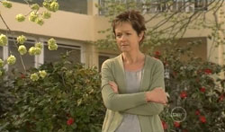 Susan Kennedy in Neighbours Episode 5619