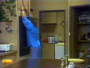 Henry Ramsay in Neighbours Episode 0687