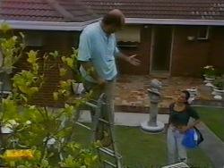 Theo Skouros, Poppy Skouros in Neighbours Episode 0950