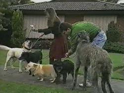 Kerry Bishop, Bouncer, Des Clarke in Neighbours Episode 0971