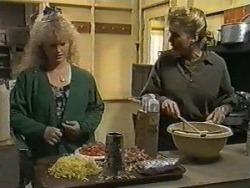 Sharon Davies, Bronwyn Davies in Neighbours Episode 0987