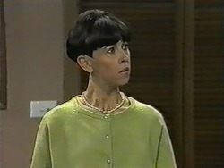 Hilary Robinson in Neighbours Episode 0993