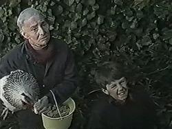 Mary Crombie, Toby Mangel in Neighbours Episode 1030