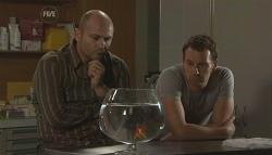 Steve Parker, Lucas Fitzgerald in Neighbours Episode 5649