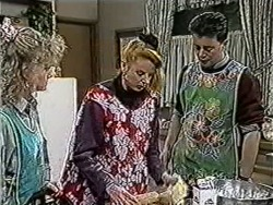 Sharon Davies, Melanie Pearson, Matt Robinson in Neighbours Episode 1066