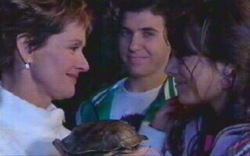 Susan Kennedy, William the turtle, Stingray Timmins, Rachel Kinski in Neighbours Episode 4879