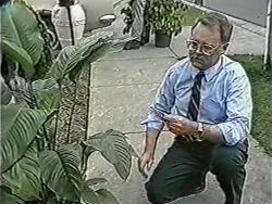 Harold Bishop in Neighbours Episode 1090