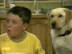 Toby Mangel, Bouncer in Neighbours Episode 1110