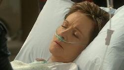 Susan Kennedy in Neighbours Episode 5819