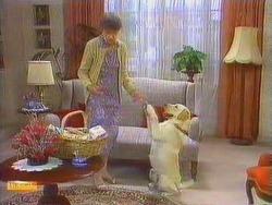 Nell Mangel, Bouncer in Neighbours Episode 0667