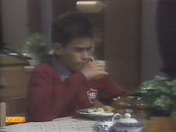 Todd Landers in Neighbours Episode 0787