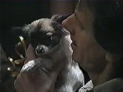 Cujo, Jonathan Whiting in Neighbours Episode 1004