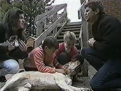 Kerry Bishop, Cujo, Toby Mangel, Katie Landers, Bouncer, Joe Mangel in Neighbours Episode 1012
