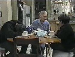 Joe Mangel, Mary Crombie, Toby Mangel in Neighbours Episode 1017