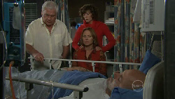 Lou Carpenter, Bridget Parker, Miranda Parker, Steve Parker in Neighbours Episode 5558