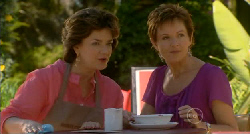 Lyn Scully, Susan Kennedy in Neighbours Episode 5919