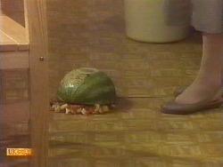 in Neighbours Episode 0673