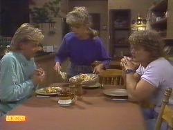 Scott Robinson, Charlene Robinson, Henry Ramsay in Neighbours Episode 0675
