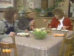 Henry Ramsay, Scott Robinson, Madge Bishop in Neighbours Episode 0835