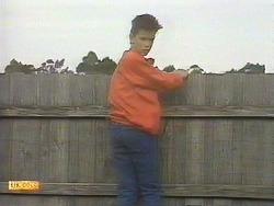 Todd Landers in Neighbours Episode 0845