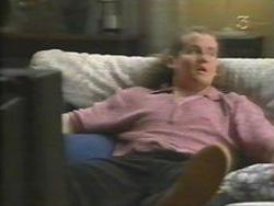 Toadie Rebecchi in Neighbours Episode 3111