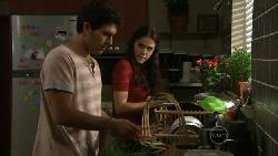 Marco Silvani, Carmella Cammeniti in Neighbours Episode 5480