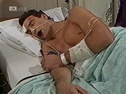 Stephen Gottlieb in Neighbours Episode 1950
